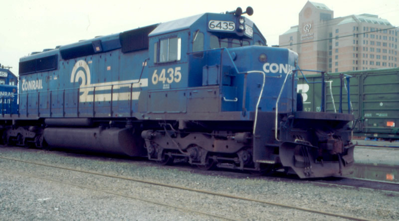 CR 6435 hangs out in the yard