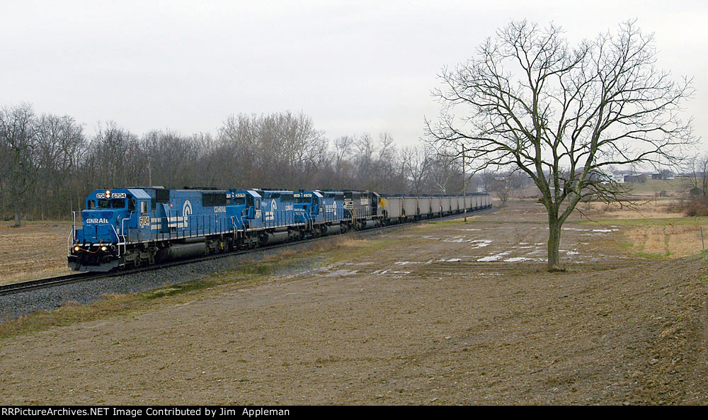 NS 536
