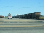 Some coal cars in the Cass Lake Yard