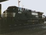 NS 8981