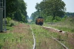 A weedy scene looking down along ex-Pere Marquette trackage