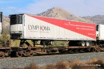 TTAX 653097 Trailer is: Lymphoma Foundation  JKCZ 5416 at Woodford-Tehachapi Pass CA. 11/17/2017