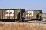 """BN 459710 (Foreground).  A couple of fully lettered BN FMC covered hoppers at March Field Ca. 8/7/2010.  """"Cascade Green Forever"""""""