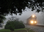 NS 175 emerging from the foggy gloom