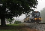 NS 175 passing through Locust Grove on a foggy morning