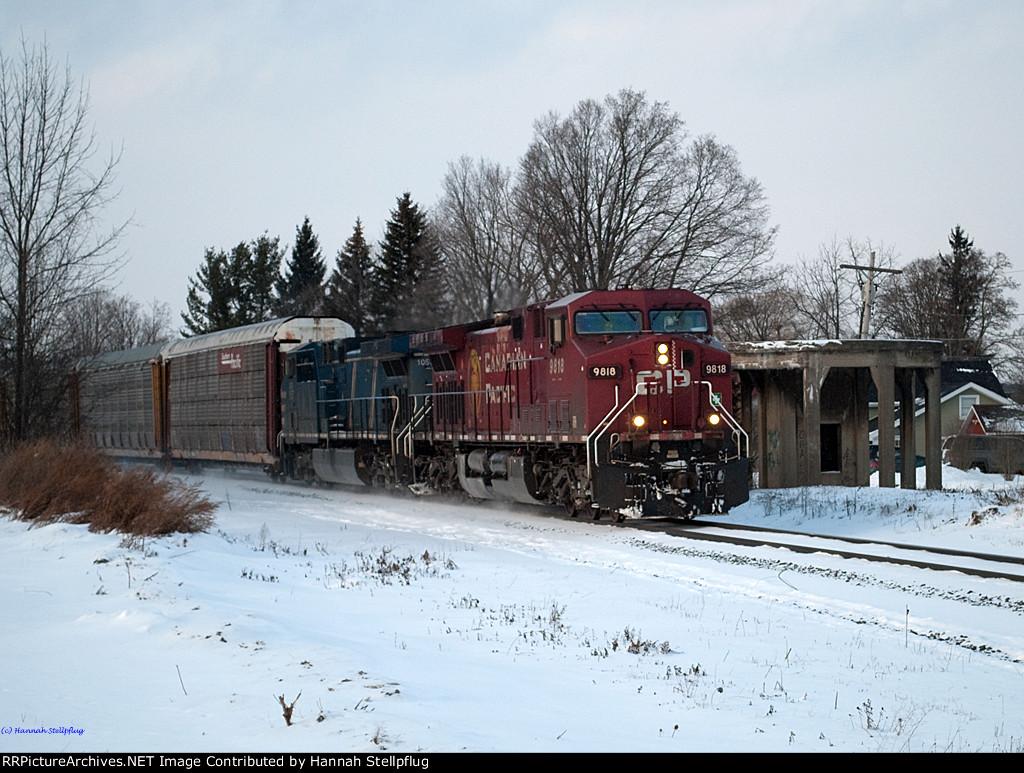 CP 9818