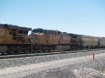 UP 5954 #2 power in a WB grain train at 12:28pm