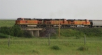 Eastbound grain train meets a westbound stack train