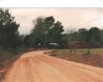 PICTURE TWENTY NINE--Alabama dirt road meets Alabama branch line as the turn heads south, loaded with fresh cut pine
