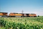 BNSF 4375 eastbound at MP116