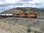 BNSF 4151 Leads an Intermodal