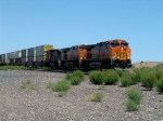 BNSF 4489 Leads Stack Train