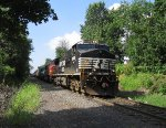 NS 9965, BNSF 8295 & EMDX 9000