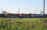 BNSF 1116, BNSF 5170 & EMDX 9079