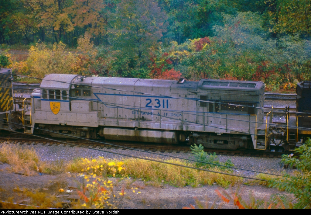 """D&H #2311 """"The Grey Ghost"""""""