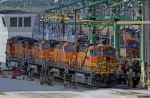 BNSF7677, BNSF5108, BNSF5004 and others