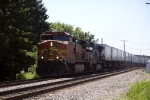 BNSF4166 and NS9545