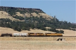 UP 8156 at Oroville