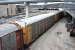 A CSX/TTGX Autorack in the CN consist
