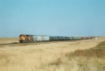 Northbound manifest train