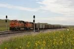 BNSF 6069 West