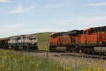 BNSF 6069 West meets BNSF 9806 East