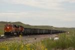 BNSF 6429 West