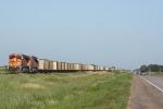 BNSF 6019 West