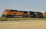 BNSF 4796 and NS 6573
