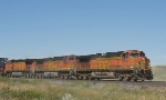 BNSF 4357   4404   and   4979