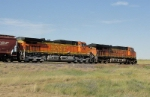 BNSF 4067 and 7408