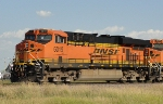 BNSF 6019