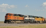 BNSF 9191   9448   and   9842