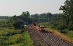 Herzog Work Train