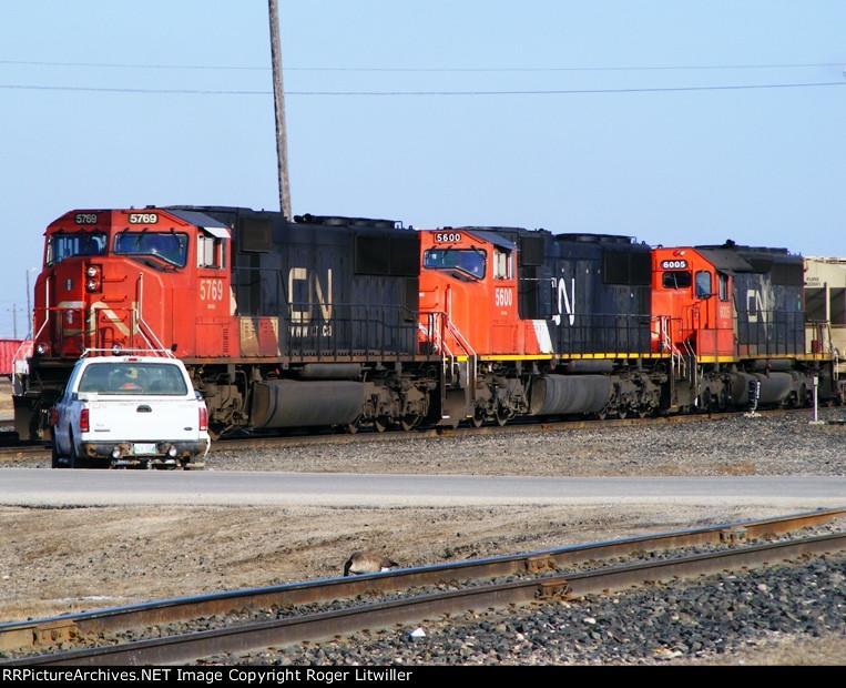 CN 5769, CN 5600 and CN 6005