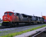 CN 8813, BCOL 4646 and IC 1004
