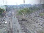 Ribbon Rail
