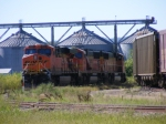 BNSF 5952