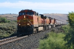 BNSF 5506 leads an mt eb