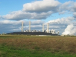 PRB Coal Piled High