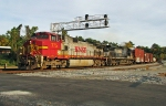 NS 187 with a nice warbonnet leader