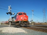 NS 17R with CN power and a ns catfish sqweezed in between the 2