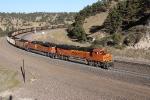 S/B BNSF Train