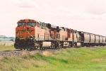 Eastbound grain train waits