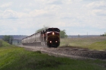 BNSF 629 Heads a Grain Train