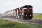 BNSF 629 on the Point