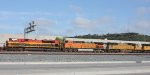 KCS, BNSF, UP consist on the A.C.