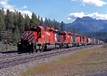 CP 5911 and three sisters approach Divide west of Lake Louise on CP's laggan Sub