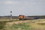 BNSF 4989 Brings a Westbound String of Grain Hoppers Up the Grade