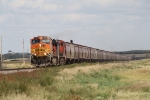 BNSF 4989 with a Long String of Hoppers